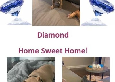diamond-home